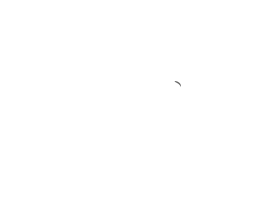 Cycle & Performance